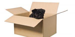 Special 4 Pets verzendkosten